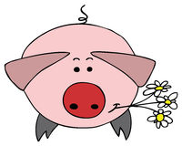 Pig. Hand drawn pig with flowers Royalty Free Stock Photo