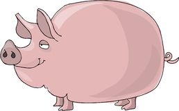 Pig. This illustration that I created depicts a big, fat, pink pig Royalty Free Stock Images
