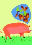 Pig. Thinking of acorns Stock Image