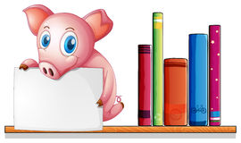 A pig above a shelf holding an empty signboard Royalty Free Stock Photos