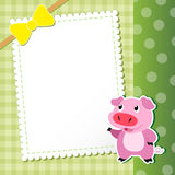 Pig. baby card. Royalty Free Stock Images