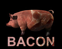 Pig And Bacon. An image of a pig with a sliced bacon overlay texture on the word bacon, and the pig Stock Photo