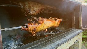 A pig is baked on the coals, rotating stock video footage