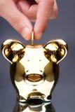 Pig bank Royalty Free Stock Photos