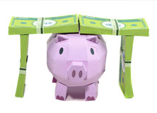 Pig bank with banknote. On white background Royalty Free Stock Photo