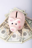 Pig bank on dollar banknotes Stock Image