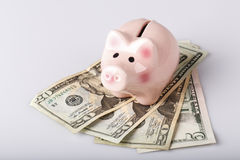 Pig bank on dollar banknotes Royalty Free Stock Image