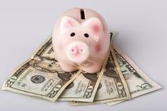 Pig bank on dollar banknotes Stock Photo