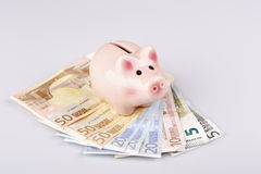 Pig bank on euro banknotes Stock Images
