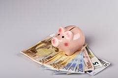 Pig bank on euro banknotes Stock Photos