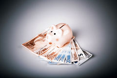Pig bank on euro banknotes Royalty Free Stock Image