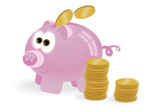 Pig bank. Funny pig piggy Bank with coins on white background Stock Photography