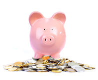 Pig bank and money. Coin. Isolated over white background Stock Photos