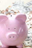Pig bank and money Stock Images