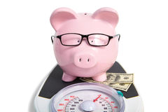 Pig bank and scales. Over white background Stock Photography