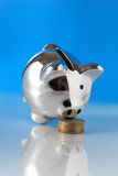 Pig bank sniffing coins on blue background Stock Photos