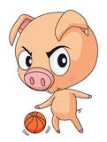 Pig basketball Stock Photos