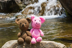 Pig and bear doll on nature background Stock Photos