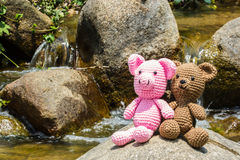 Pig and bear doll on nature background Royalty Free Stock Image
