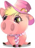 The pig Royalty Free Stock Image