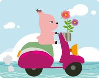 Pig on a bike Royalty Free Stock Photo
