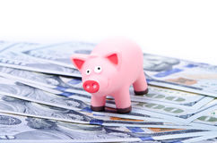 Pig on 100 bills Royalty Free Stock Photography