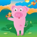 Pig bird card Stock Photography