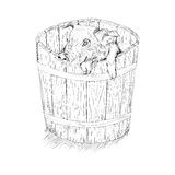 Pig in the bucket. Black and white sketch illustration of a pig in wooden bucket Stock Photo
