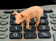 Pig and calculators Royalty Free Stock Photo