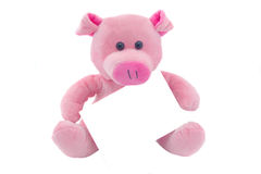Pig with a card. Children toy a pig with the empty form the isolated Royalty Free Stock Images