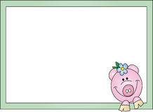 Pig card Stock Photo