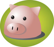 Pig cartoon Royalty Free Stock Photography