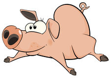 Pig. Cartoon Royalty Free Stock Image