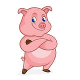 Pig cartoon folding hands Stock Photography