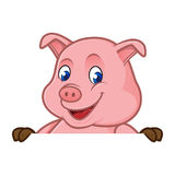 Pig cartoon holding blank sign Royalty Free Stock Photos