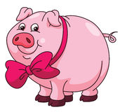 Pig Cartoon Royalty Free Stock Images