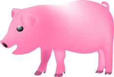 Pig cartoon Stock Photo