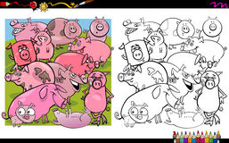 Pig characters coloring book Stock Photos