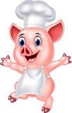 Pig chef cartoon Stock Images