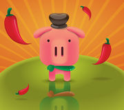 Pig chilly sun backgeound Stock Photos