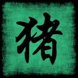 Pig Chinese Zodiac royalty free stock photos