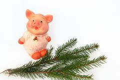 Pig is a Chinese zodiac sign. Symbol of new year. Cute funny pink pig and a green branch of a tree located on a white background. Pig is a Chinese zodiac sign royalty free stock photo