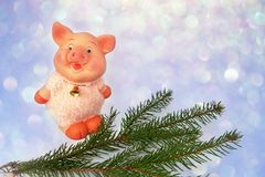 Pig is a Chinese zodiac sign. Symbol of new year. Cute funny pink pig and green tree branch located on blue bokeh background. Pig is a Chinese zodiac sign royalty free stock photo