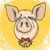 Pig Christmas and New Year vector concept vector illustration