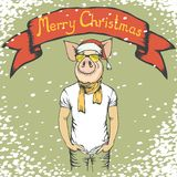 Pig Christmas and New Year vector concept stock illustration