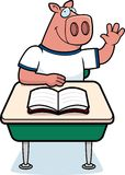 Pig Classroom Royalty Free Stock Images