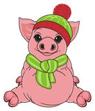 Pig in clothes Stock Photography