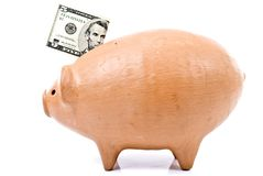 Pig Coin Bank. Five dollar in the top of Pig coin bank Royalty Free Stock Photography