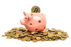 Pig coin bank  with bitcoin Stock Image