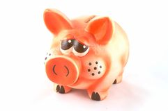 Pig - a coin box. In white background Stock Image